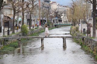 公園を流れる川の写真・画像素材[1666868]