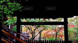 近くの橋の上の写真・画像素材[1666876]