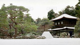 雪に覆われた家の写真・画像素材[1666880]