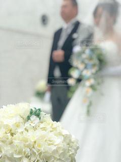 近くの花のアップの写真・画像素材[1666889]