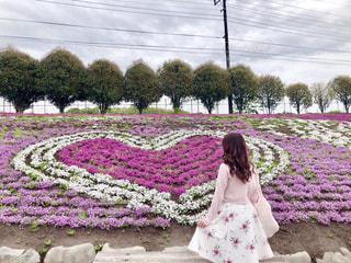 女性,花,花畑,後ろ姿,景色,お花,ハート,フォトジェニック,インスタ映え