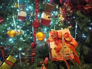 クリスマスツリーの写真・画像素材[2852692]