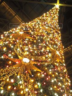クリスマスツリーの写真・画像素材[2852690]