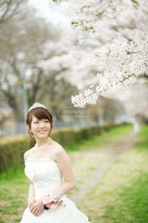 女性,桜,屋外,結婚式,ドレス,人,結婚式ドレス