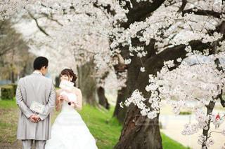 白いドレスを着た男の写真・画像素材[3048154]