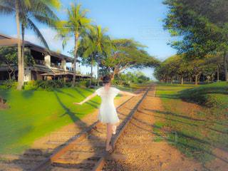 背景に木がある電車の線路上の電車の写真・画像素材[3141635]
