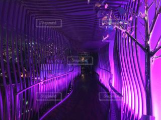 暗い部屋で紫色の光の写真・画像素材[849164]