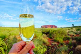 ワインのグラスを持っている手 - No.929846
