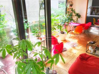 ウィンドウの横にあるテーブルの上の花の花瓶の写真・画像素材[1018669]