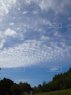 秋の青空の写真・画像素材[3801849]
