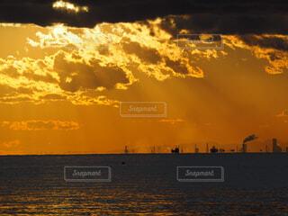 黄金色の海岸の写真・画像素材[4295596]