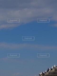 なんで空は青いの?の写真・画像素材[4839709]