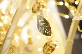 屋内,葉,イルミネーション,クリスマス,装飾,明るい,グランフロント,ゴールド,グランフロントクリスマス,屋内イルミネーション