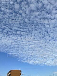 天高い秋の空と雲の写真・画像素材[3858687]