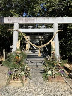 神社の鳥居と門松の写真・画像素材[4038883]