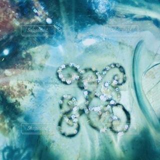 水中の宝物の写真・画像素材[3786967]
