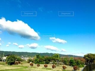 秋の飛行船のような雲の写真・画像素材[3836288]