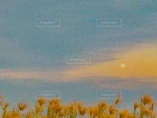 12月29日の月の写真・画像素材[4011192]