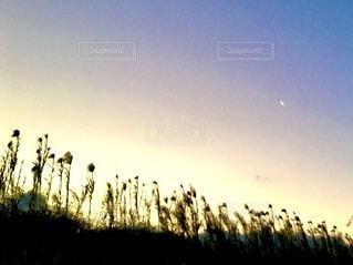 虹色の空と明け方の月の写真・画像素材[4039034]