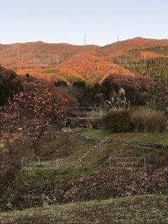 季節の移り変わりの写真・画像素材[3803773]
