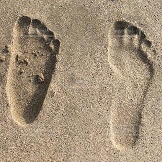 砂の写真・画像素材[166602]