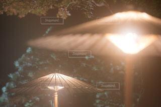 雨は紅葉の写真・画像素材[3796451]