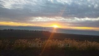 さわやかな朝の写真・画像素材[3822171]