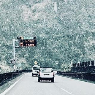 雪の中を走るの写真・画像素材[3803490]