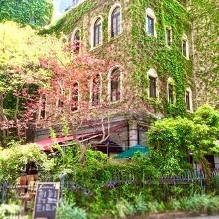 蔦のあるレンガ塀のおしゃれなカフェの写真・画像素材[3981765]