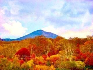 八甲田山をバックにした山の紅葉の写真・画像素材[3981850]
