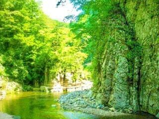 森の中を流れる澄んだ川と岩肌の写真・画像素材[3989669]