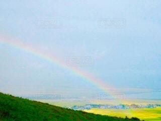丘にかかる虹の写真・画像素材[3995777]
