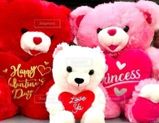 冬,動物,ピンク,赤,かわいい,アメリカ,仲良し,プレゼント,楽しい,ふわふわ,ハート,ぬいぐるみ,癒し,イベント,贈り物,幸せ,ハッピー,テディベア,色,モコモコ,ライフスタイル,キュート,ぬくもり,バレンタインデー,ギフト,ガーリー,グッズ,漫画,クマ,もこもこ,princess,多色,写真素材,色・表現,着衣,Happy Valentine's Day,2021,LOVE YOU