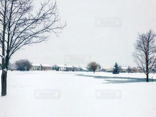 雪に覆われた公園にある凍結した池の写真・画像素材[4141197]
