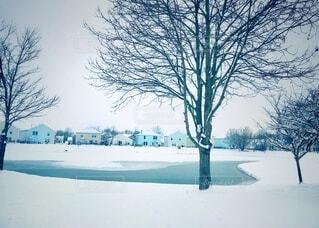 雪で覆われた公園と凍結した池の写真・画像素材[4141269]