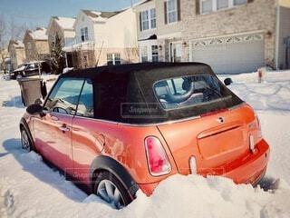 雪に埋もれて動けない小型の写真・画像素材[4175932]
