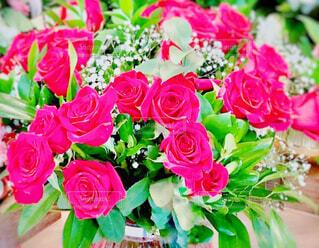花瓶にいけたピンクの薔薇の花のアップの写真・画像素材[4234917]
