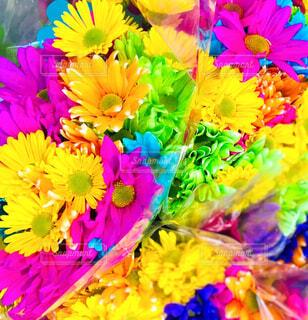色とりどりの鮮やかな色の花束の写真・画像素材[4303827]