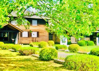 和風庭園のある木造住宅の写真・画像素材[4414106]