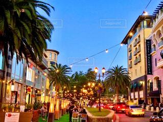 ライトアップされた椰子の木がある街並みの写真・画像素材[4574705]