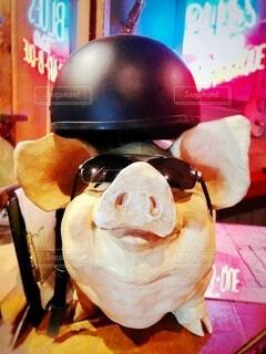 サングラスとヘルメットを被った豚の置物の写真・画像素材[4903787]