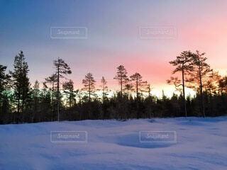 自然,風景,冬,雪,運動,神秘,フィンランド,ウィンタースポーツ