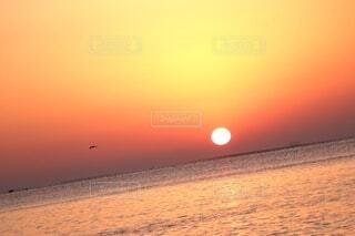 自然,海,空,鳥,屋外,太陽,朝日,水面,海岸,夜明け,オレンジ,眩しい,旅,正月,日本,朝,お正月,日の出,フレア,瀬戸内海,明るい,早朝,関西,グラデーション,新年,初日の出,橙,日,新しい,サンライズ,始まり,赤穂,東,一日,旅空
