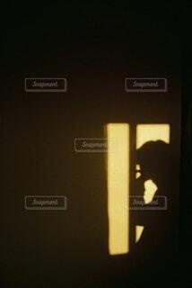 朝日が写す影の写真・画像素材[3820850]