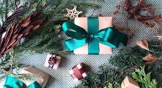 植物とプレゼントの写真・画像素材[3985193]