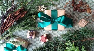 植物とプレゼントの写真・画像素材[3985192]
