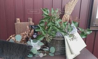 外回りの掃除道具と植物の写真・画像素材[4003830]