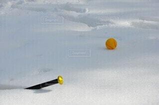 雪の上に残されたバットとボールの写真・画像素材[4164670]