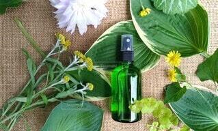 緑の葉っぱとオーガニックコスメの緑色の瓶の写真・画像素材[4429575]