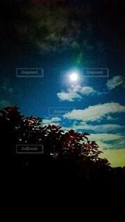 空の花火の群の写真・画像素材[3919908]
